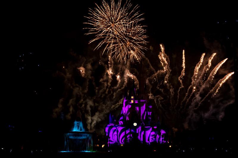 Disney-8192.jpg