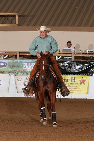 Sunday Novice Horse Open