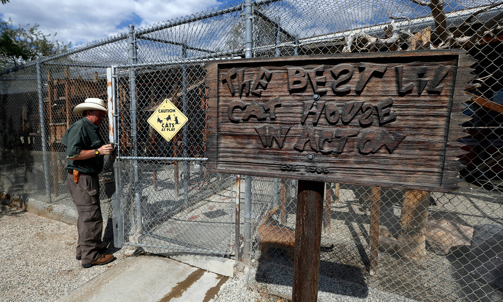 . Leo Grillo enters the cat complex at his DELTA (Dedication & Everlasting Love to Animals) Rescue complex in Acton, Calif. Aug. 29, 2013. (AP Photo/Reed Saxon)