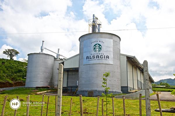 Hacienda Alsacia Starbuck Coffee Farm-Costa Rica
