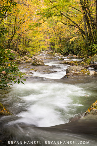 Big Creek in Fall, Smoky Mountains
