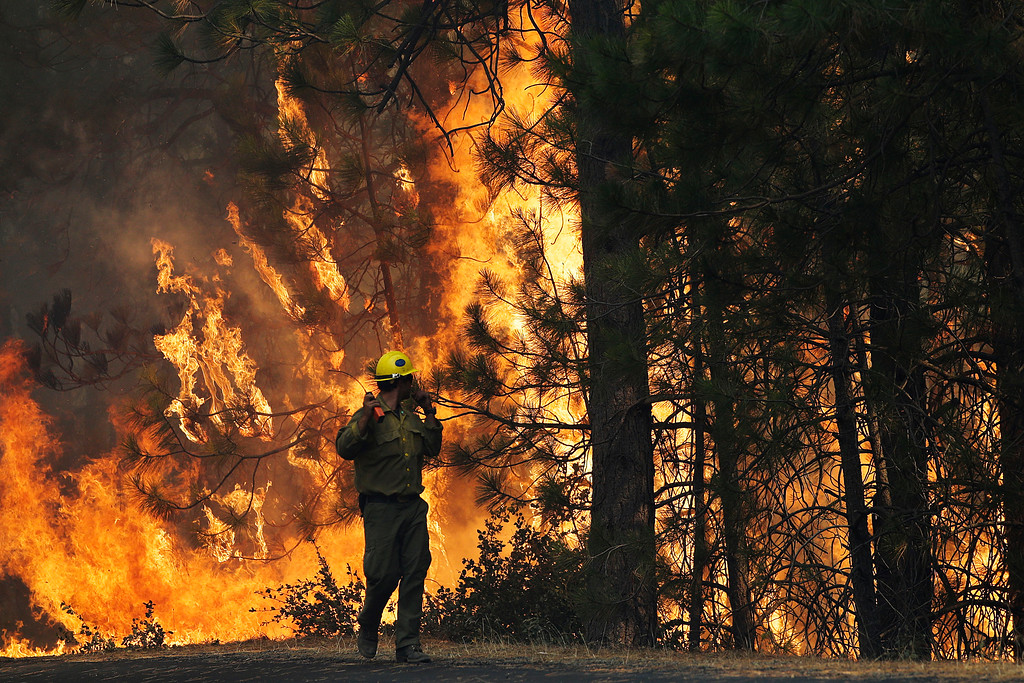 . Firefighter A.J. Tevis watches the flames of the Rim Fire near Yosemite National Park, Calif., on Sunday, Aug. 25, 2013. With winds gusting to 50 mph on Sierra mountain ridges and flames jumping from treetop to treetop, hundreds of firefighters have been deployed to protect this and other communities in the path of the Rim Fire raging north of Yosemite National Park. (AP Photo/Jae C. Hong)