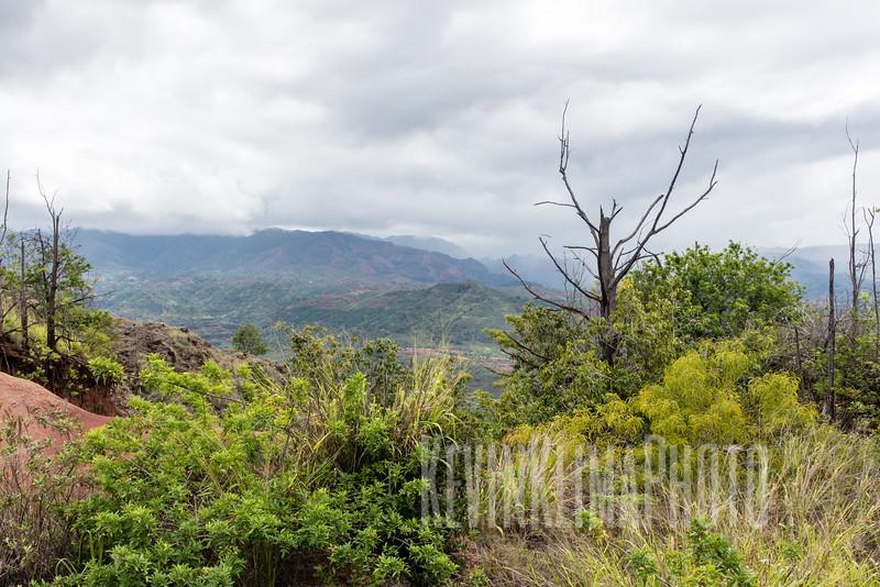 Kauai2017-099.jpg