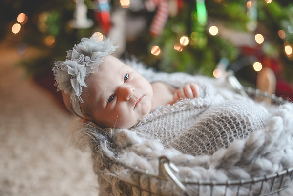 Newborn Evelyn Trinity
