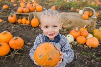 Blake - Pumpkin Mini 2019