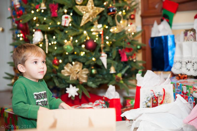 DeLaune Christmas ,December 22, 2018,-29.jpg