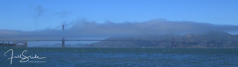 San Francisco 2018 -45.jpg