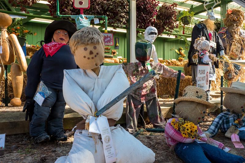 Luke Skywalker scarecrow at NC State Fair 2016
