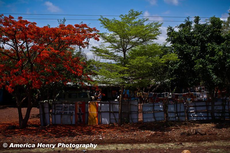 TANZANIA WEB EDITS November 2012 (94 of 732).JPG