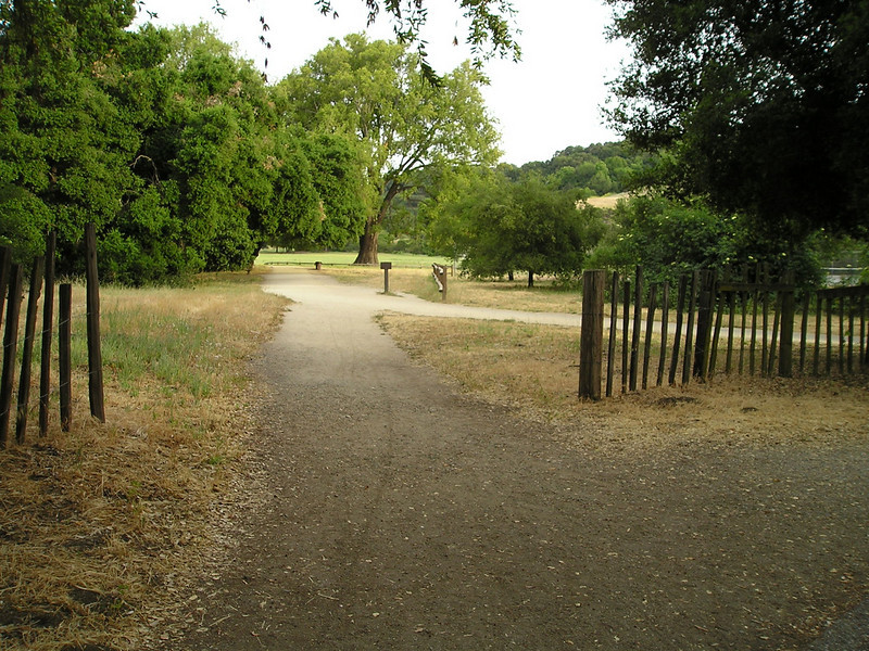 Lower Meadow Trail. Temperature had climbed into the 90s earlier today but by 7:00 it was cooling somewhat and being outside and on such nice trails was a delight.
