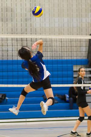 2014-15 Women's Volleyball