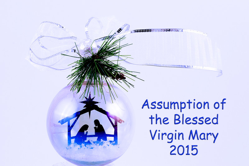 20151124 ABVM Christmas Ornaments-5670 blue with text final.jpg