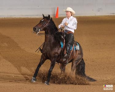 Friday Novice Horse Non Pro Set 3