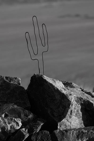 2020.01.19 Joshua Tree - Pinto Mountain Solo