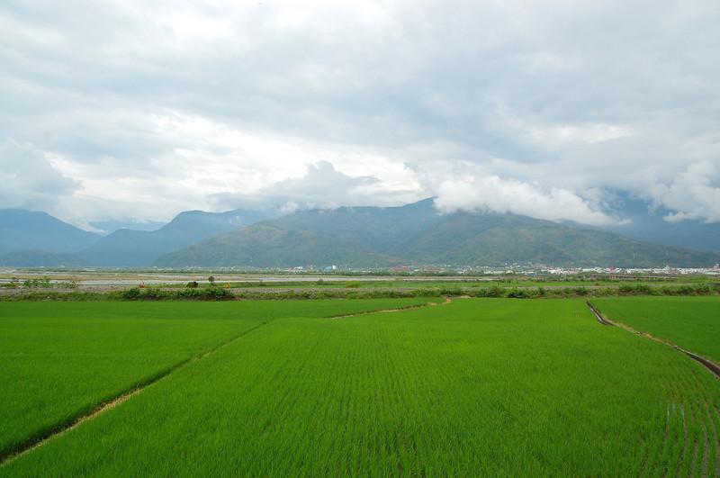 昨日大雨過後,今早雨勢稍歇,但天空雲層仍然不薄