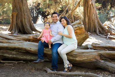 The Ortiz-Soto Family 2014