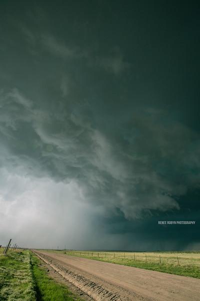 Storm_W0C5244colorWEB.jpg
