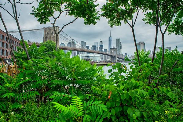 NYC & Coney Island