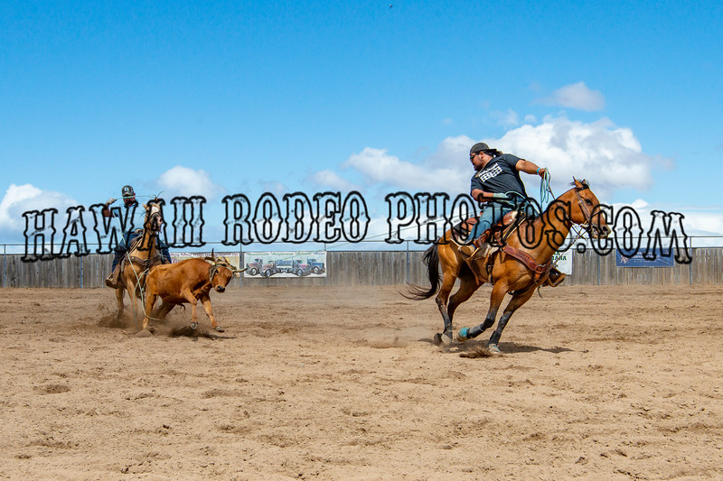 ALL ROPING