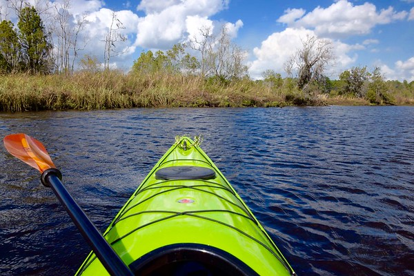 Kayak trips 2018