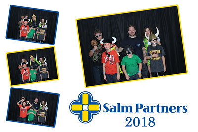 Salm Partners  2018