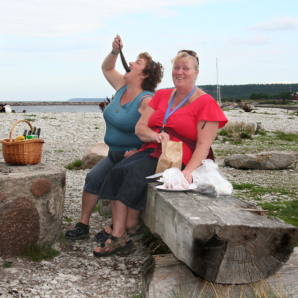 Gotland 20110608_0065.jpg
