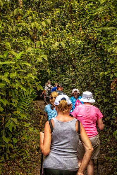 Costa Rica 2016 20160405-12-56-_MG_2638-006-Edit.jpg