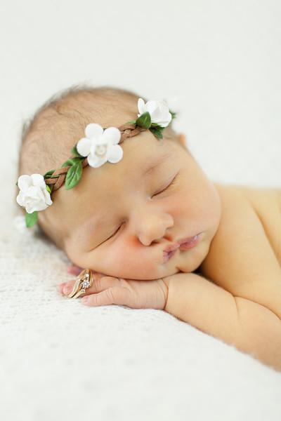 Miss Harvey | Newborn
