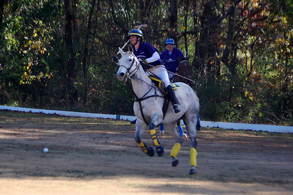 Chukkar Farm Polo - Final Match 2011