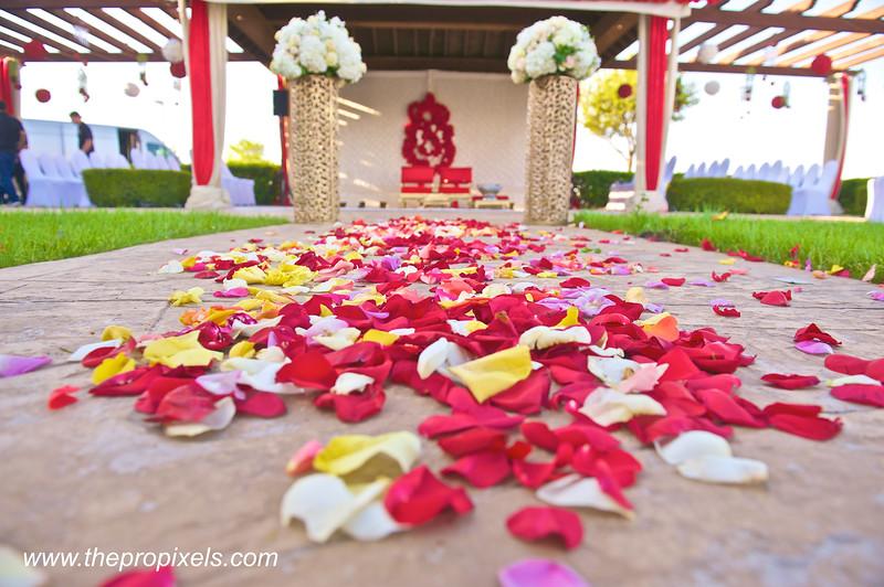 Shiva-Wedding-2018-03-002534.JPG