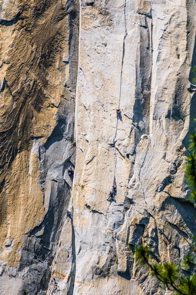 Yosemite El Capitan Rock Climbing