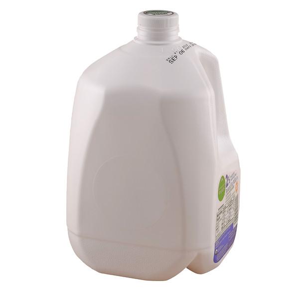 Milk Jug-2-XT1B1210.jpg