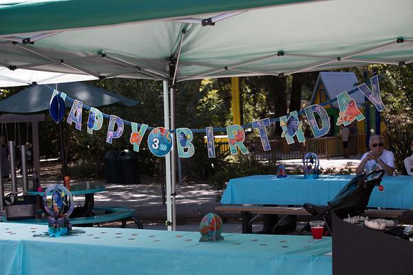 Kaiya's Birthday Party, Happy Hollow Zoo, July 2017
