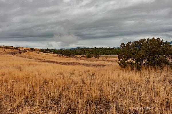 Pecos, NM