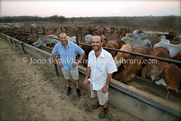 ZIMBABWE, Bulawayo. Ruvale Farm (Rubin, Paul, Grant Pilossof family) (8.2012)