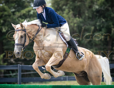 Running Wind Equestrian 6-18-16