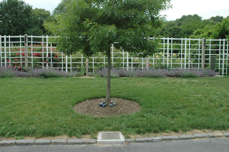 Brooklyn Botanical Gardens 090.jpg