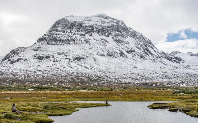 Landscapes_King Haakon Bay-6.jpg