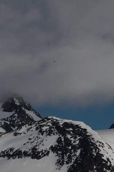 Mantle.Glacier_2016-533.jpg