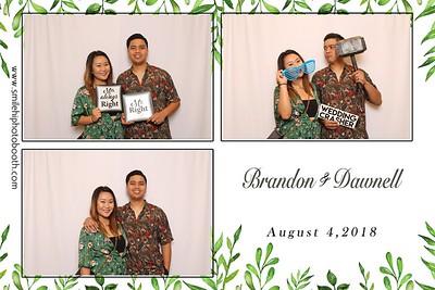 Brandon & Dawnell