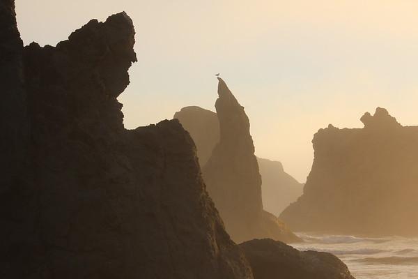 Southern Oregon Coast 2013