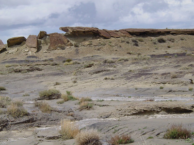 Bisti Badlands BLM 2005