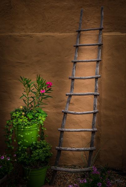 Garden Ladder.jpg