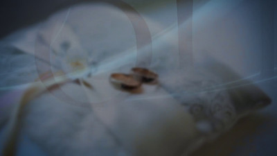 Weddings. Video-Photo SlideShows Part IV