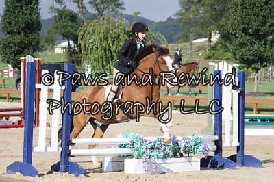 Hunter Ring:  Beginner Hunter (Saturday)