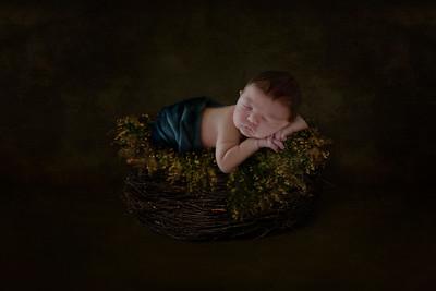 2017 | Oliver, 8 days old