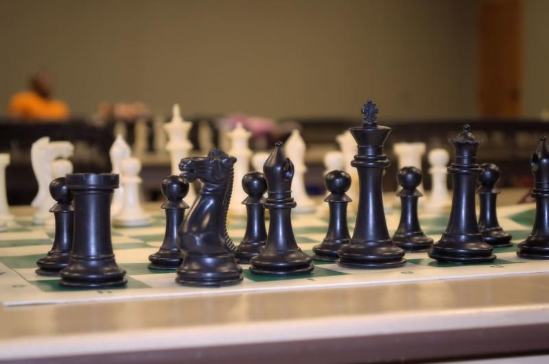 knight-chess (3) -1.jpg