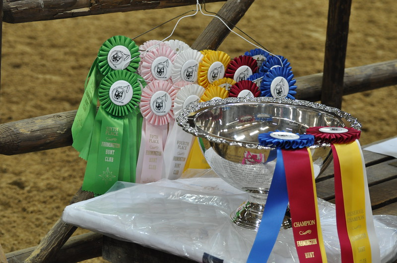 trophy-ribbons-fhcshow_0343.JPG