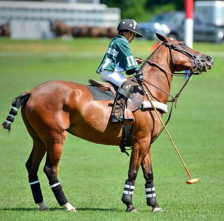 Maryland Polo 2016-4