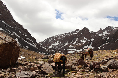 Morocco:: High Atlas Trek